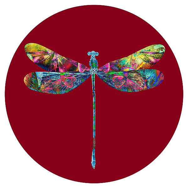 Dragonfly Circle 1 By Dario Preger Color Photograph