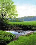 Spring Morning - Elvers Creek by Steven Kozar (Giclee Print)