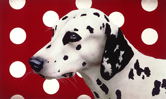 Dotted Dog by Will Bullas (Color Photograph) | Artful Home