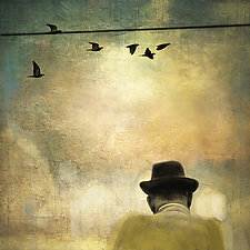 Man with Birds on a Wire by Gloria Feinstein (Color Photograph)