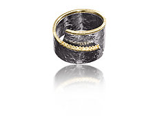 Cyclone Ring by Elizabeth Garvin (Silver, Stone and Gold Ring)