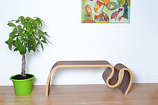 Crazy Carpet Bench by Kino Guerin (Wood Bench)