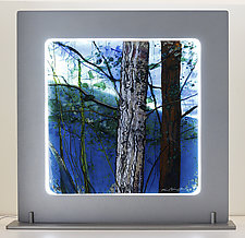 Into the Trees by Alice Benvie Gebhart (Art Glass Sculpture)