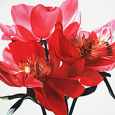 Red Tree Peonies by Barbara Buer (Giclee Print)