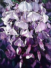 Wisteria by Barbara Buer (Giclee Print)