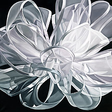 Black and White Ribbon by Barbara Buer (Giclée Print)
