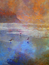 Oyster Catchers by the Sea by LuAnn Ostergaard (Color Photograph)
