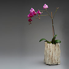 White Orchid Pot with Gold Luster by Lois Sattler (Ceramic Vessel)