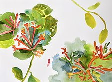 Honeysuckle by Suzanne Siegel (Watercolor Painting)