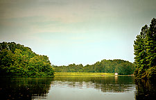 Untitled Lake by Pamela Viola (Color Photograph)