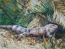 Iguana by Terrece Beesley (Watercolor Painting)