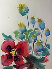 Spent Poppies by Alix Travis (Watercolor Painting)