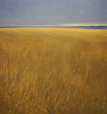 Afar by Mary Jo Van Dell (Oil Painting)