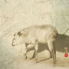 Divine Messenger (Japanese Serow) by Yuko Ishii (Color Photograph)