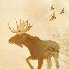 Moose in Yellowstone by Yuko Ishii (Color Photograph)