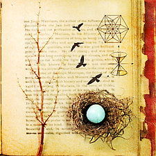 Soul-Centered Nest by Yuko Ishii (Mixed-Media Color Photograph)