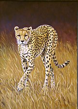 Cheetah by Werner Rentsch (Oil Painting)