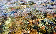 Glacial River, Montana by Jed Share (Color Photograph)