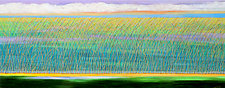 The Reed in Pastel by Mary Johnston (Oil Painting)