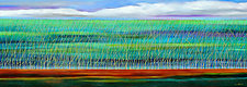 The Reeds Underwater 8 by Mary Johnston (Oil Painting)