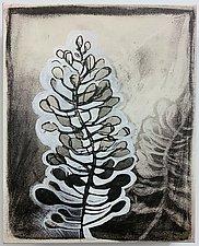 Winter Garden 3 by Barbara Gilhooly (Giclee Print)