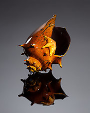 Fancy Crackle Conch Shell with Sea Star by Treg  Silkwood (Art Glass Sculpture)