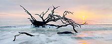 Jekyll Sunrise by Richard Speedy (Color Photograph)