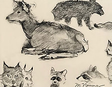 Animal Study Two by Meredith Nemirov (Charcoal Drawing)