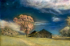 Two Barns and Tree by Elizabeth Holmes (Hand-Colored Photograph)