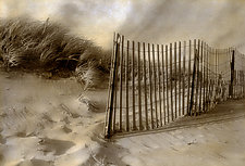 Beach Dune Fence by Elizabeth Holmes (Hand-Colored Photograph)