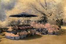 Country Farm Stand by Elizabeth Holmes (Hand-Colored Photograph)