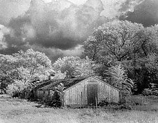 Flanders Farm II by Elizabeth Holmes (Black & White Photograph)