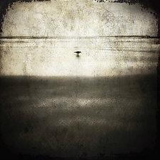 Shoreline by Gloria Feinstein (Black & White Photograph on Aluminum)