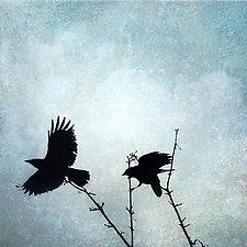 Two Crows in Blue Sky by Gloria Feinstein (Color Photograph on Aluminum)