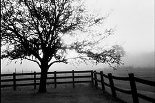 Adams Ranch by Kevin Boldenow (Black & White Photograph)