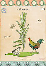 Chicken, Frog, and Rosemary by MF Cardamone (Print with Mixed Media)
