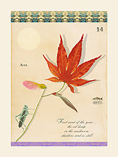 Haiku with Maple by MF Cardamone (Giclee Print)