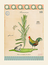 Chicken, Frog, and Rosemary by MF Cardamone (Giclee Print)
