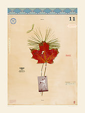 Baseball Bat Tree by MF Cardamone (Giclee Print)