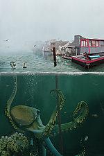 Shipwreck by Kate Harrold (Giclee Print)