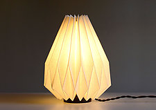 Naoki Table Lamp by Jorgelina Lopez and Marco  Duenas (Mixed-Media Table Lamp)