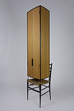 Dwell Series No.8 by Ted Lott (Wood Cabinet)