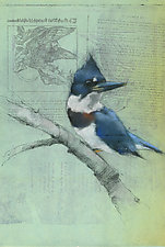 Kingfisher on Fairy Tale by Sylvia Gonzalez (Giclee Print)