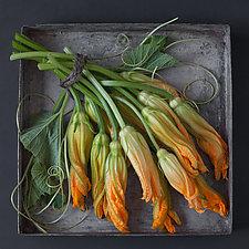 Squash Blossoms by Lynn Karlin (Color Photograph)