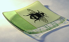 Bugs and Bees by Alice Benvie Gebhart (Art Glass Dish)