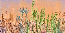 Abstract Grass Forms VI by Hal Mayforth (Giclee Print)