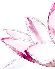 Open Hand Lotus by Pamela Viola (Giclee Print)