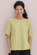 Eyelash Boxy Tee by Lisa Bayne  (Knit Top)