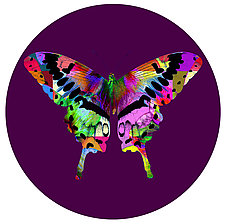 Butterfly Circle 2 by Dario Preger (Photography Color)