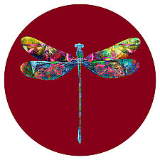 Dragonfly Circle 1 by Dario Preger (Color Photograph)